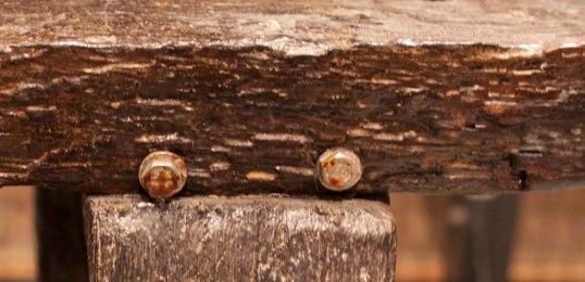 Vänster bakbens möte mot skivan. Benet sticker ut något från skivans kant och är fasad in mot kanten.