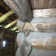 Her er eine knubben knekt av og ein kan sjå korleis halsen av nova ser ut. Foto: Roald Renmælmo